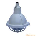 防爆灯 防爆灯具BGL-200S系列增安型防爆灯