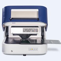 镀层测厚仪MAXXI 6