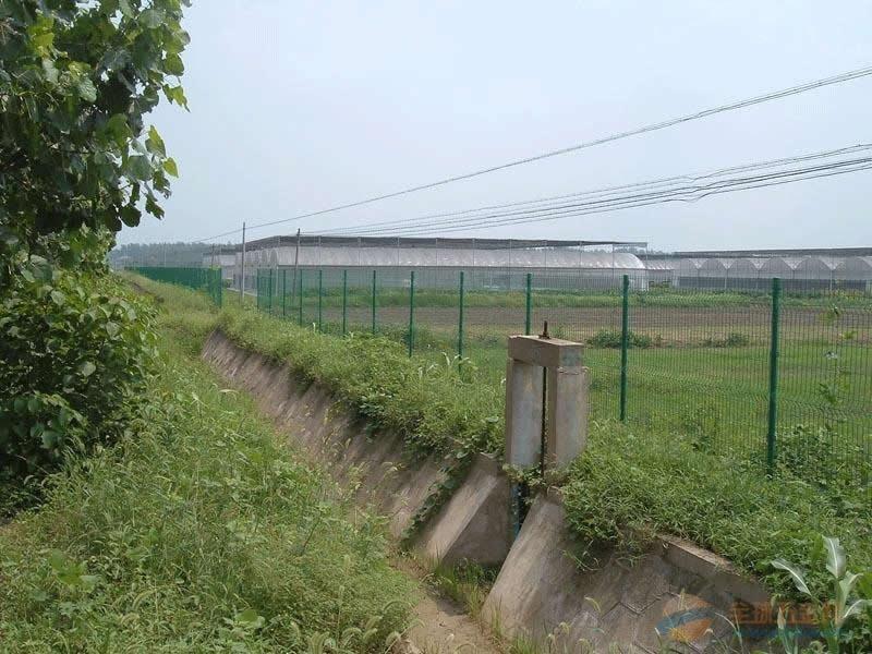 农业园护栏网,农业园护栏网价格创翔