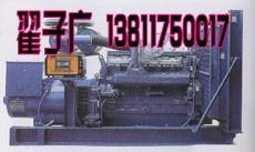 潍城发电机出租--发电机租赁13811750017