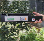 便携式叶面积仪用于果树叶面积指数的测量
