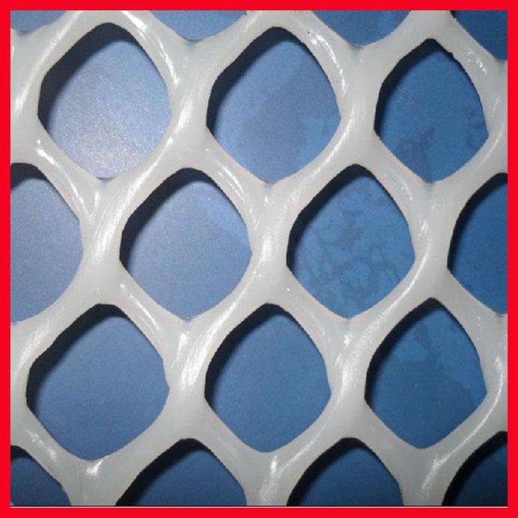 养鸭塑料网 工厂直销 优质耐用抗老化多种颜色可选