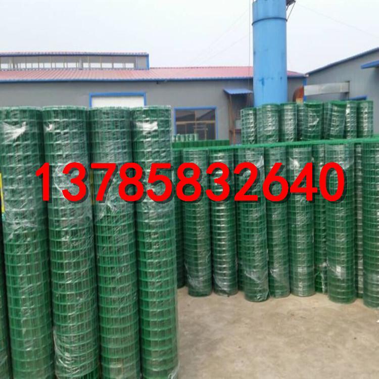 圈地养殖方孔网   山坡养鸡网   绿色铁丝网厂家