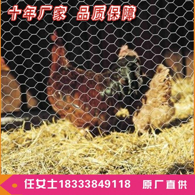 小孔六角网 拧花编织六角围栏 鸡舍网栏热销