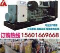 上海柴油发电机组,柴油发电机组厂家