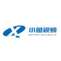 深圳市小鱼视频科技有限企业