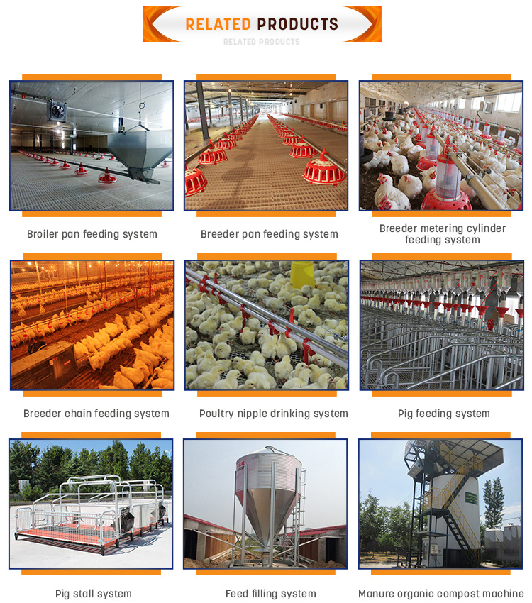 Complete Automatic Poultry Equipment for Broiler/Breeding/Poultry/Birds/Agricultural/Chicken//Layer/Laying Hen/Livestock/Farming with CE/ISO9001 Certification