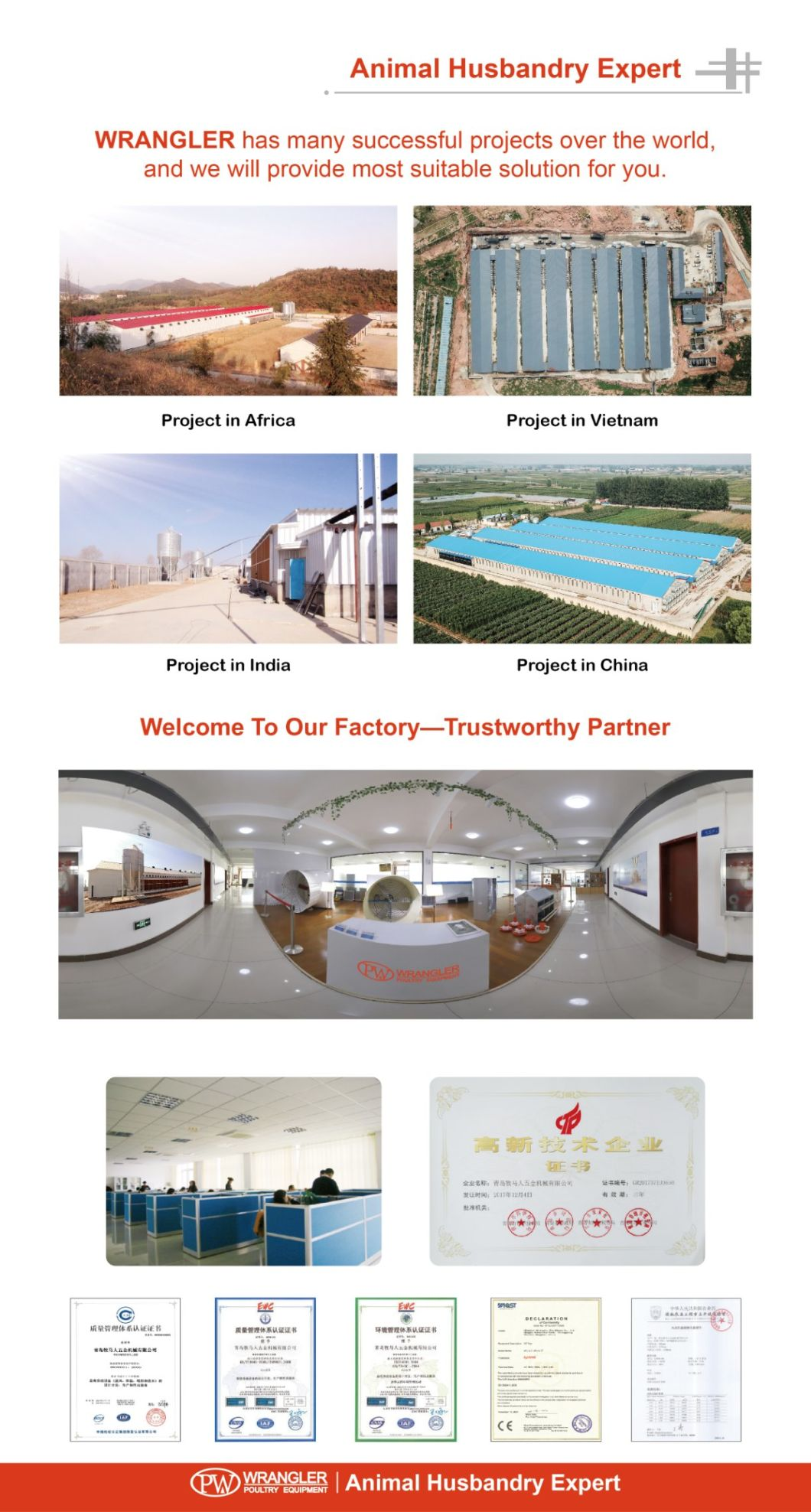 Complete Modern Farming Project Ground Breeding Poultry Equipment