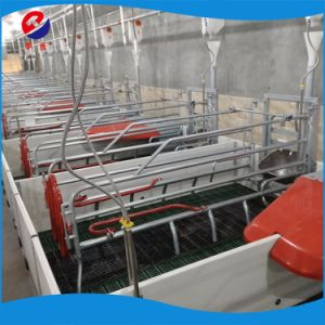 Factory Direct Sale Cheap Farrowing Crates for Pigs