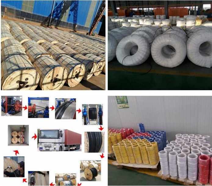 Soild/Stranded/Flexible Copper Conductor PVC Insulated Power Cable Electric Wire pictures & photos