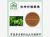 杜仲叶提取物  水溶性粉  杜仲叶冻干粉  专业提取  质量保证