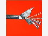 新闻:大连信号电缆PTYL22选型手册