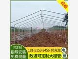 朔州草莓大棚使用寿命长无锡政通特钢