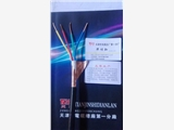 赣州总线电缆STP-120-1*2*22AWG厂家报价