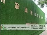 道路简易户外广告假草坪 建设厂家