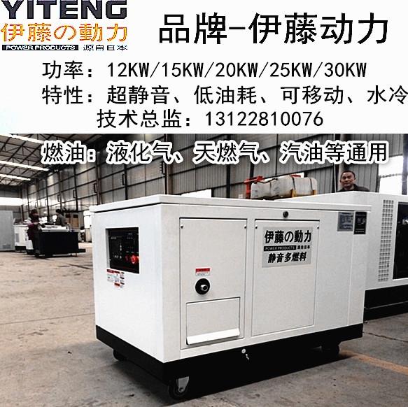 YT25RSE伊藤25千瓦汽油发电机