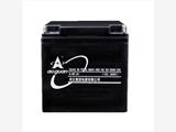 奥冠阀控式ups蓄电池6-GFM-24奥冠12V储能蓄电池现货