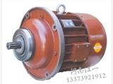电动葫芦配件之锥形电机