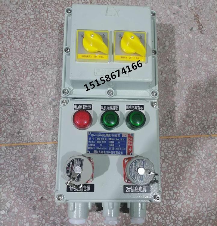 2回路防爆动力控制箱  防爆插销检修箱厂家