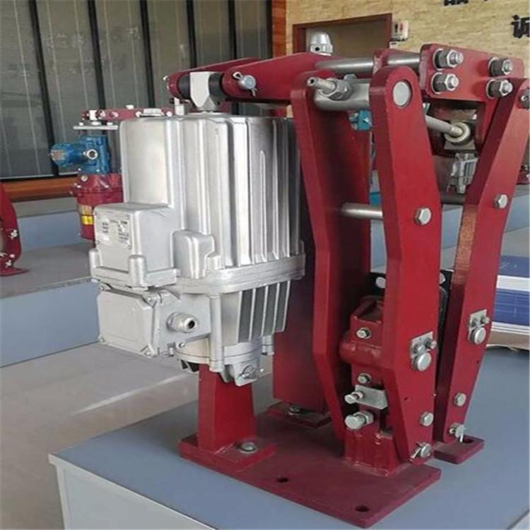 电动液压推动器Ed-50/6焦作市液压制动器厂家YWZ5-315/E80