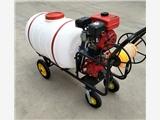 果园远程打药机 大马力推车农作物绿化喷雾器