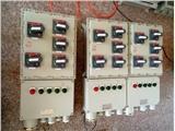 防爆动力配电柜(箱),钢板防爆动力配电柜(箱)防爆配电箱