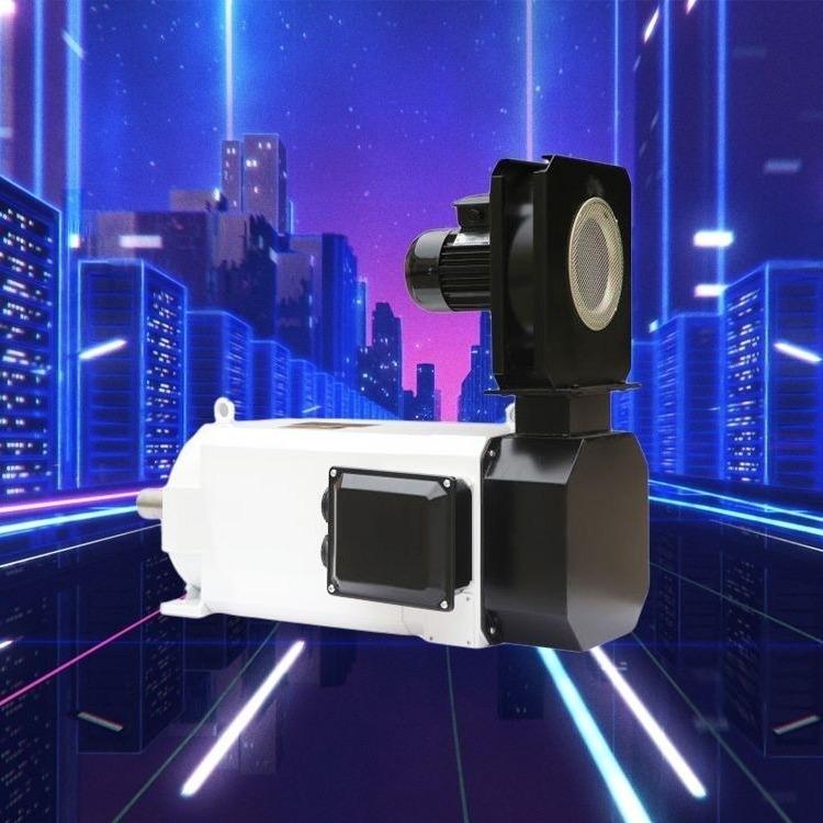 供應TJY-100-2.2KW 8極三相伺服永磁同步電動機 上海能墾伺服電機