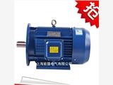 防城港三相异步电机 Y2-315L1-4 160KW交流三相异步卧式电动机