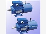 杭州變頻制動三相異步電機 YVFEJ100L2-4 3KW