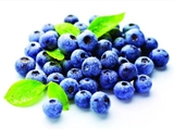 进口智利蓝莓到天津港海运报关代理公司
