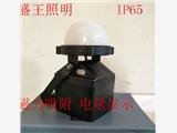 FW6330 FW6330装卸工作灯