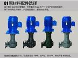 耐腐蚀提升泵加药泵