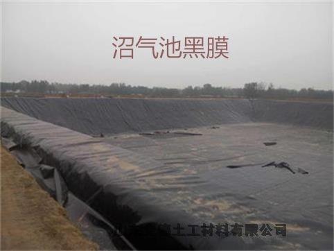 金矿调节池防渗漏1.5mm防水板施工图片海西