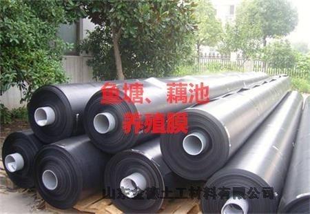 广安高机械强度建标HDPE膜工厂服务态度高