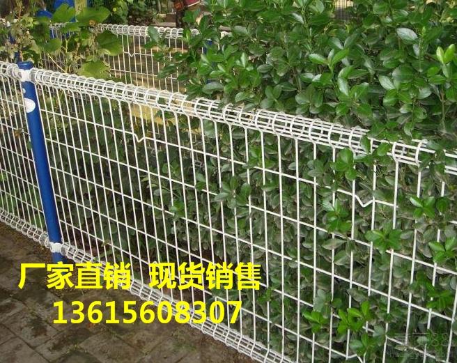 芜湖双圈护栏网  南陵县园林绿化铁丝浸塑围栏网价格  厂家规格图片齐全