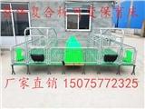 母豬產床 保育床豬位定位欄限位欄 養殖機械
