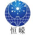 棗莊恒嶸電子科技有限公司