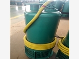 山东济南市BQS200-25-25/B防爆水泵