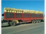 呼和浩特市和林格尔聚氨酯管托现货供应